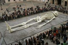 Giant Mystery 18 Strange Giant Skeletons Found In Wisconsin Unexplained Mysteries, Ancient Mysteries, Ancient Artifacts, Ancient Aliens, Ancient History, Ufo, Giant Skeletons Found, Human Skeleton Model, Nephilim Giants