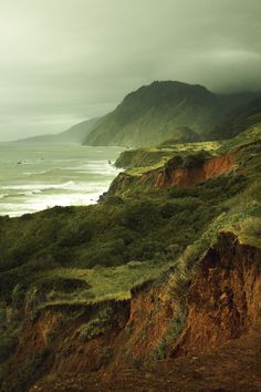 The Lost Coast - Kinfolk