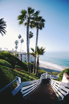 The Top 10 Spring Break Destinations For College Students - The Places Youll Go, Places To Visit, Adventure Is Out There, My Happy Place, Strand, The Great Outdoors, Adventure Travel, Adventure Awaits, Beautiful Places