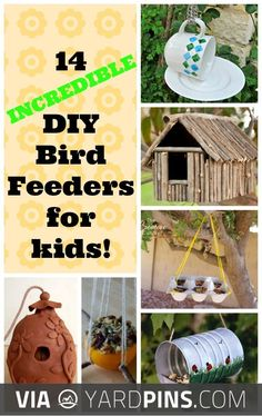 Like this -  | Check out these other super cool shots of top rated bird feeders over at yardpins.com | #birdfeeders #birds #aviary #gardens #gardening #botany #horticulture #flowers #trees #plants