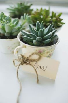 Fill thrifted teacups with succulents for an affordable and adorable bridal shower favor. This idea from LoveLola is perfect for atea party theme!