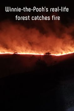 Firefighters battled a blaze in Ashdown Forest, the inspiration for Winnie-the-Pooh's Hundred Acre Wood. Hundred Acre Woods, Urban Park, Extinct Animals, Photo Checks, East Sussex, Natural Disasters, Great Photos, The Great Outdoors, Mother Nature