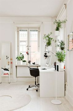 white office with houseplants, love tons of windows in a work space! #design #home