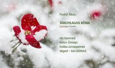 Fodor Ákos: Fodor Ákos: TÁRGYILAGOS XÉNIA Motto Quotes, Haiku, Poetry, Wisdom, Life, Advent, People, Quotation, Haikou