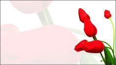 Floricultura 0017