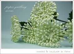 Claire's paper craft: paper quilling  chrysanthemum & instructions
