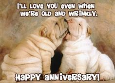 Happy Anniversary Wishes Images and Quotes. Send Anniversary Cards with Messages. Happy wedding anniversary wishes, happy birthday marriage anniversary Happy Anniversary Funny, Wedding Anniversary Poems, Happy Anniversary To My Husband, Anniversary Quotes For Husband, Anniversary Pictures, Anniversary Cards, Anniversary Greetings, Anniversary Ideas, Birthday Wishes For Wife