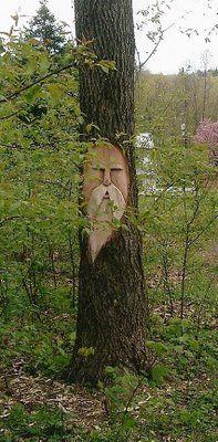 "Tree carving by Lisa Scherer of ""www.workingforcarrots.com""."