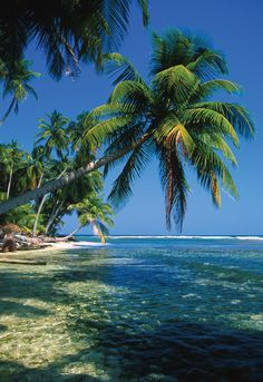 Beautiful Belize...seriously...can't wait to go!!!