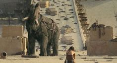 Pictures & Photos from 10,000 BC (2008) - IMDb