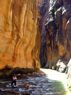Top-Down Hike of the Zion Narrows in Zion National Park, Utah