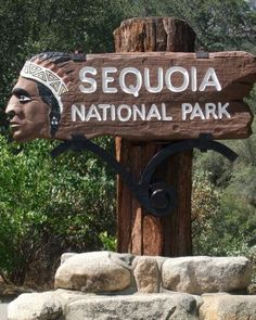 Sequoia National Park, California                                              Ann, this is right near Yosemite...we get 2-fer!!!