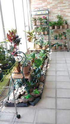 새로운 베란다 정원 Garden Plants, Balcony, Camping, Home, Campsite, Ad Home, Balconies, Homes, Campers