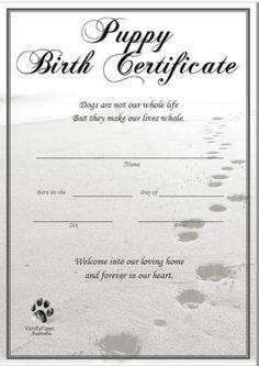 Puppy Birth Certificate Birth Certificate Form, Birthday Certificate, Certificate Design Template, Adoption Certificate, Dog Whelping Box, Whelping Puppies, Funny Certificates, Dog Birth, Puppy Nursery