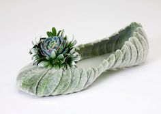 soft for tippy toeing... would replace succulent w/ rose or green burdock?