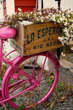 Love this - pink bicycle with vintage wooden crate of flowers on the back.