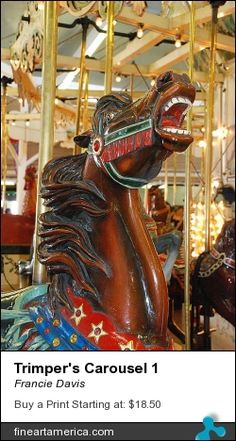 Carousel Steed by Francie Davis