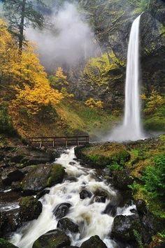 Elowah Waterfall- in Columbia River- USA