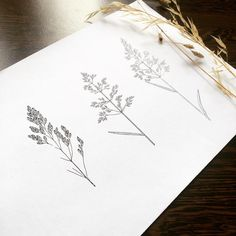 Today I will try to make a handpoke tattoo first time.
