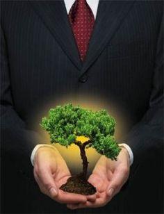 Sustentabilidade - Empresas Ecologicamente Corretas