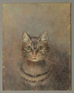 ANTIQUE PRIMITIVE NAIVE OIL PAINTING of a TABBY CAT c 1890