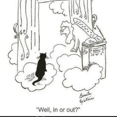 This exactly what will happen when my little black cat moves on.