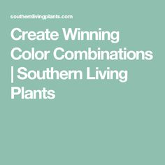 Create Winning Color Combinations | Southern Living Plants