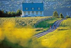 Romantic things to do in Quebec City. Visit the chocolate museum. Have a romantic dinner in Old Quebec. Places Around The World, The Places Youll Go, Places To See, Around The Worlds, Velo Quebec, Quebec City, Road Trip Usa, Province Du Canada, Quebec Montreal