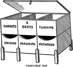 Cellar Storage Bin for Vegetables - Take six drygoods boxes and bolt them together horizontally as shown. Put legs on to hold them off floor and a cover. Paint labels. Put larger vegetables in upper boxes. The top section can be moved to make filling the lower boxes easy. A separate bin for potatoes only is best.