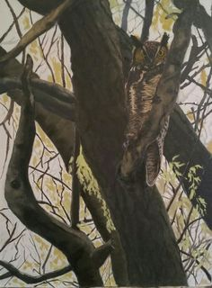 In the shadows-Great horned owl original oil painting