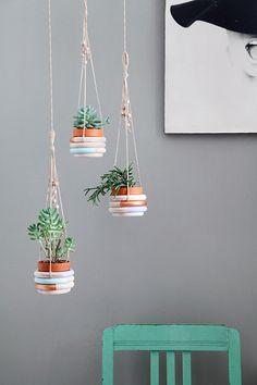 DIY: wooden ring plant hangers