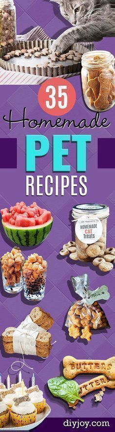 DIY Pet Recipes For Treats and Food - Dogs, Cats and Puppies Will Love These Homemade Products and Healthy Recipe Ideas - Peanut Butter, Gluten Free, Grain Free - How To Make Home made Dog and Cat Food #Healthysmalldogfood #homemadecatfood #catfoodtreats #catfoodproducts #catfoodideas