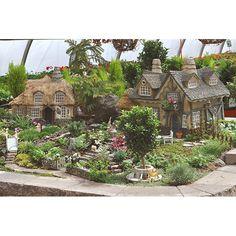 Miniature Fairy Garden with stone houses and miniature garden plants | fariehollow.com