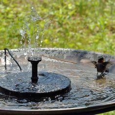 Hummingbird Bird Bath, Humming Bird Bath, Hummingbird Plants, Bird Bath Fountain, Fountain House, Solar Panel Kits, How To Attract Birds, Garden Fountains, Water Fountains