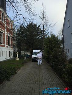 Material wird geliefert - Wohnungsrenovierung in Schwachhausen - Bremen