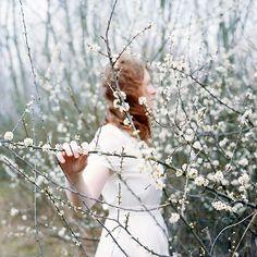 116/365 by elsvo, via Flickr Spring time is nice