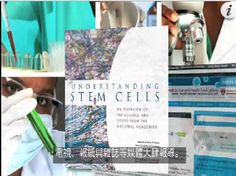 Stem-Kine™   Renew, Replenish and Rejuvenate