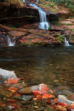 Tom Branch Falls, vertical & wide angle by Jeffrey B., via Flickr