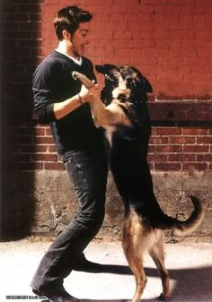 Jake Gyllenhaal and Atticus share a dance. <- I love that Glamour has a whole channel about cute guys and pets  Atticus and my Greta, used to like to play together at a neighborhood park, it was a great sight to see 2 GSD running in the park together