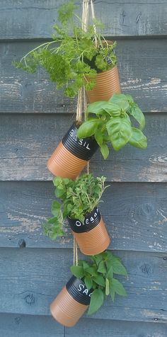 Tin Can Herb Garden – Upcycled Stuff has some easy instructions on turning tin cans into planters and even making them into a hanging vertical herb garden. Check out some other tin can planter projects here. Hanging Herbs, Hanging Planters, Herb Planters, Diy Hanging, Hanging Gardens, Planter Ideas, Planter Pots, Hanging Baskets, Diy Herb Garden