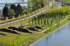 Park Schinkeleilanden in Amsterdam by Buro Sant en Co Landschapsarchitectuur