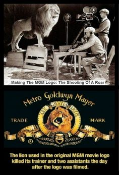 MGM Lion Filming