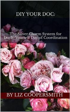 My E-Books: DIY Your DOC: The Silver Charm System for Do-It Yourself Day-Of Coordination, and The Mad Dash Down the Aisle, How to plan your wedding in Six Months...Or Less by Liz Coopersmith.