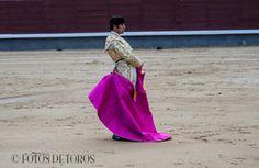 DAVID MORA  http://www.fotosdetoros.es