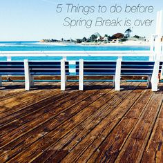 The College Girl Daily: 5 Things to do before spring break is over