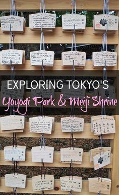 Exploring Tokyo's Yoyogi Park & Meiji Shrine