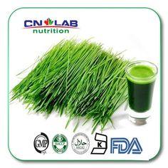 Bulk1kg Quality 100% Organically Farmed Supergreen Wheat Grass Powder for Health & Fitness High Fiber Diet