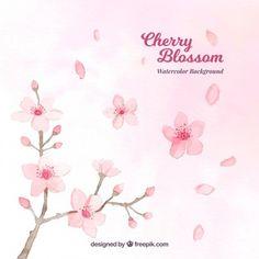 Aguarela de flor de cerejeira