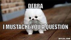 Image from http://assets.diylol.com/hfs/6df/0d0/185/resized/mustache-dog-meme-generator-debra-i-mustache-you-a-question-b77e56.jpg.