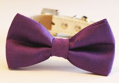 Purple Dog Bow Tie with high quality White leather collar - Chic dog Bow tie